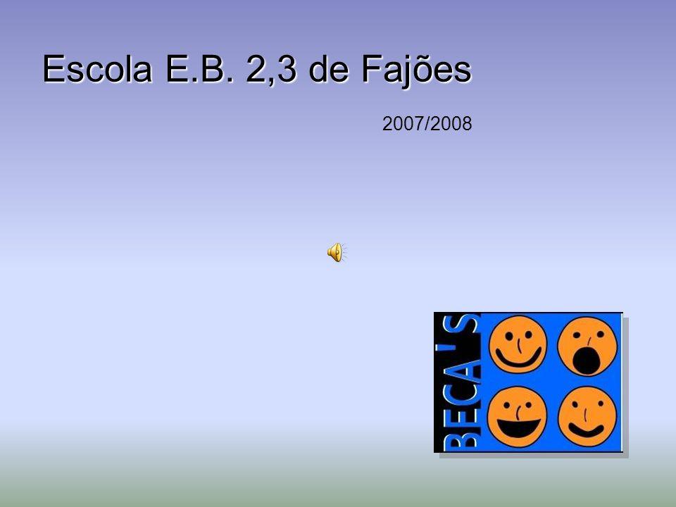 Escola E.B. 2,3 de Fajões 2007/2008