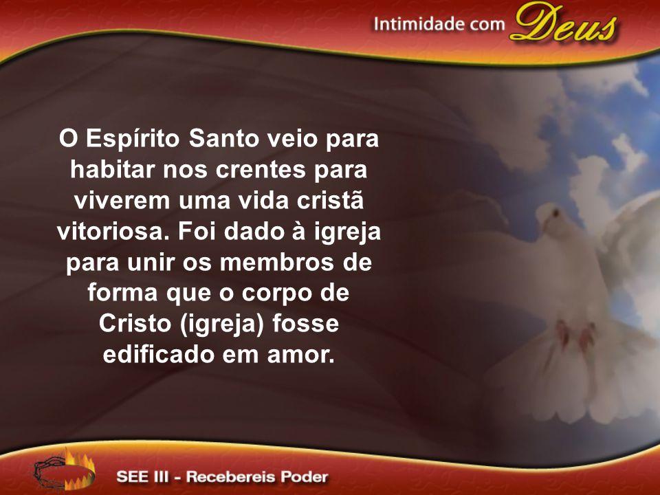 O Espírito Santo veio para habitar nos crentes para viverem uma vida cristã vitoriosa.