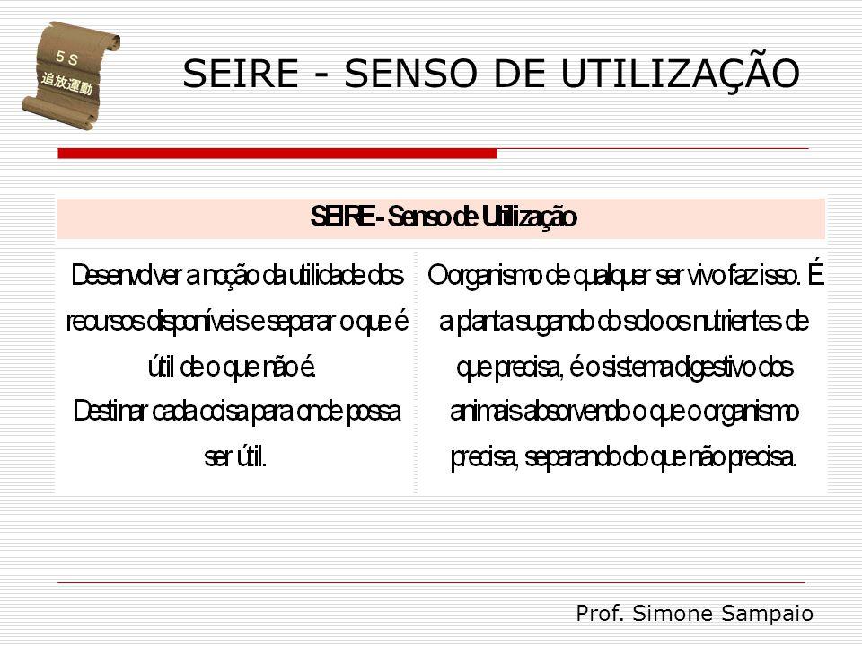 SEIRE - SENSO DE UTILIZAÇÃO Prof. Simone Sampaio
