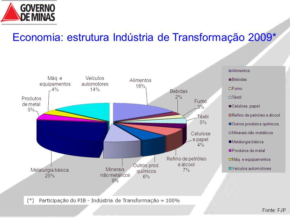 (*)Participação do PIB - Indústria de Transformação = 100% Fonte: FJP Economia: estrutura Indústria de Transformação 2009*