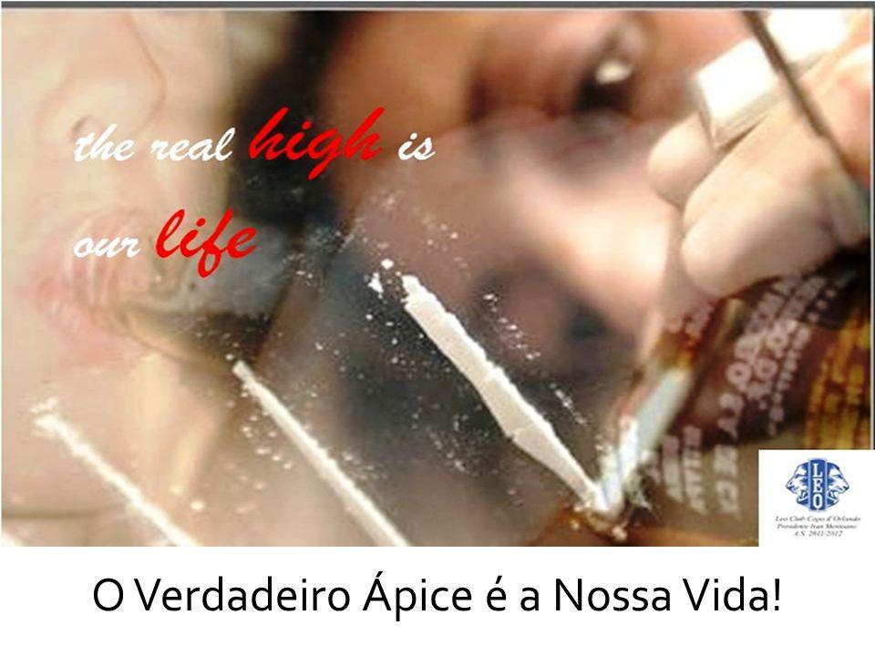 O Verdadeiro Ápice é a Nossa Vida!