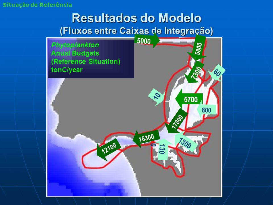 Resultados do Modelo (Fluxos entre Caixas de Integração) Phytoplankton Anual Budgets (Reference Situation) tonC/year 1300 5700 130 0 16300 12100 17800 7300 60 5000 5800 800 10 Situação de Referência