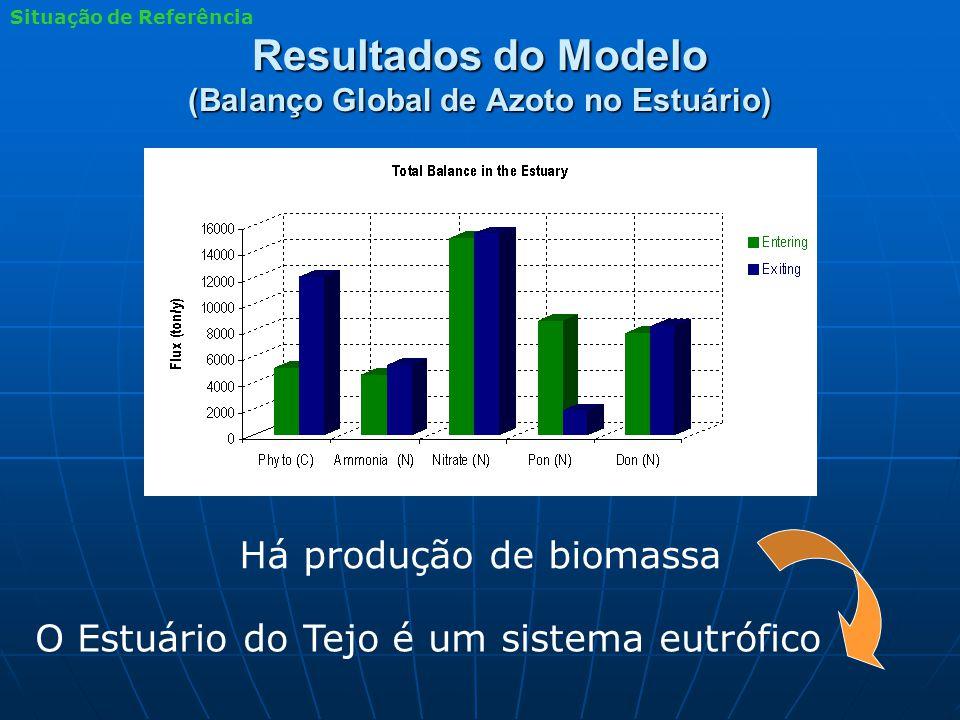 Resultados do Modelo (Balanço Global de Azoto no Estuário) Há produção de biomassa O Estuário do Tejo é um sistema eutrófico Situação de Referência