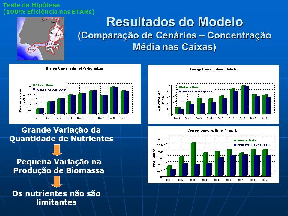 Resultados do Modelo (Comparação de Cenários – Concentração Média nas Caixas) Grande Variação da Quantidade de Nutrientes Pequena Variação na Produção de Biomassa Os nutrientes não são limitantes Teste da Hipótese (100% Eficiência nas ETARs)