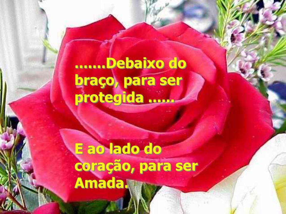 .......Debaixo do braço, para ser protegida...... E ao lado do coração, para ser Amada........Debaixo do braço, para ser protegida...... E ao lado do