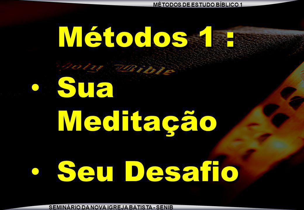 MÉTODOS DE ESTUDO BÍBLICO 1 SEMINÁRIO DA NOVA IGREJA BATISTA - SENIB Métodos 1 : Sua Meditação Seu Desafio Métodos 1 : Sua Meditação Seu Desafio