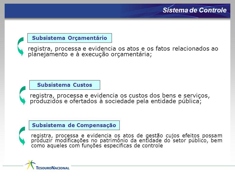 registra, processa e evidencia os custos dos bens e serviços, produzidos e ofertados à sociedade pela entidade pública; registra, processa e evidencia