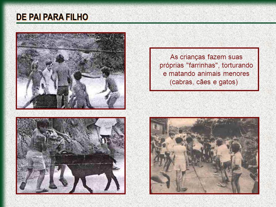 As crianças fazem suas próprias farrinhas , torturando e matando animais menores (cabras, cães e gatos) DE PAI PARA FILHO