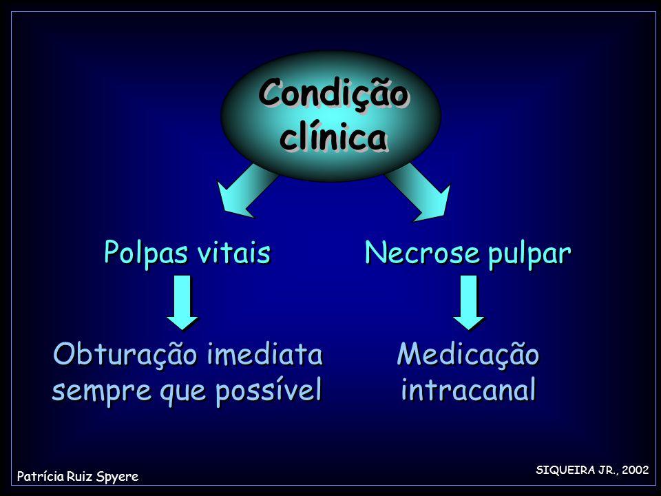 Obturação imediata sempre que possível Polpas vitais Necrose pulpar Medicação intracanal SIQUEIRA JR., 2002 Condição clínica Patrícia Ruiz Spyere