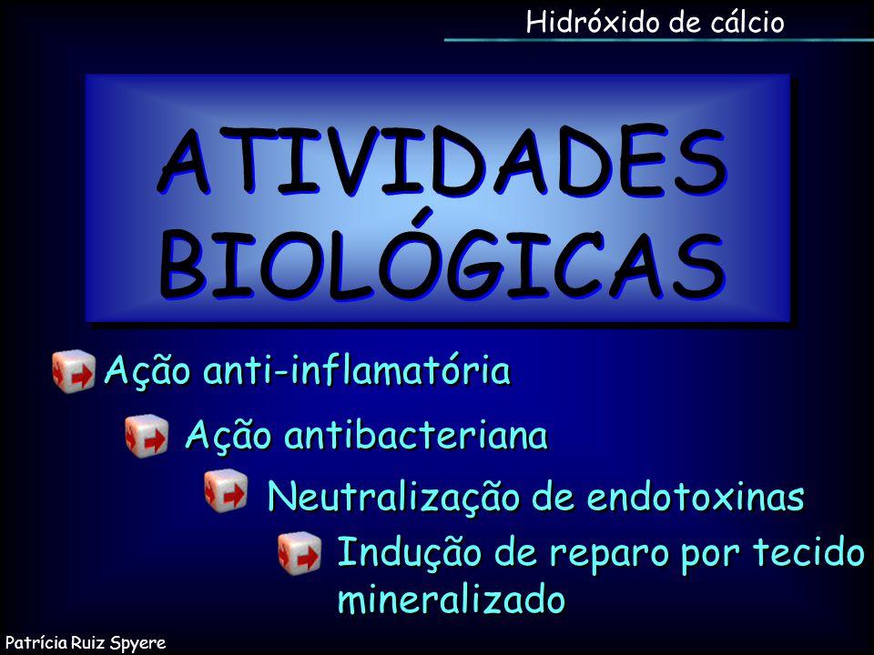 Hidróxido de cálcio ATIVIDADES BIOLÓGICAS Indução de reparo por tecido mineralizado Neutralização de endotoxinas Ação antibacteriana Ação anti-inflama