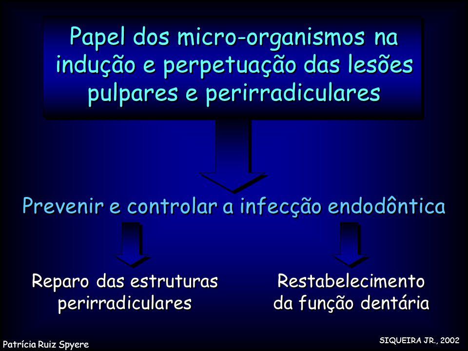 Papel dos micro-organismos na indução e perpetuação das lesões pulpares e perirradiculares Reparo das estruturas perirradiculares Prevenir e controlar