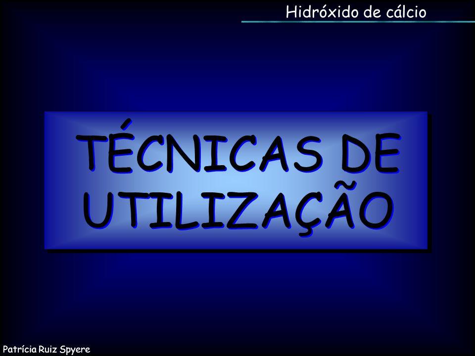 Hidróxido de cálcio TÉCNICAS DE UTILIZAÇÃO Patrícia Ruiz Spyere