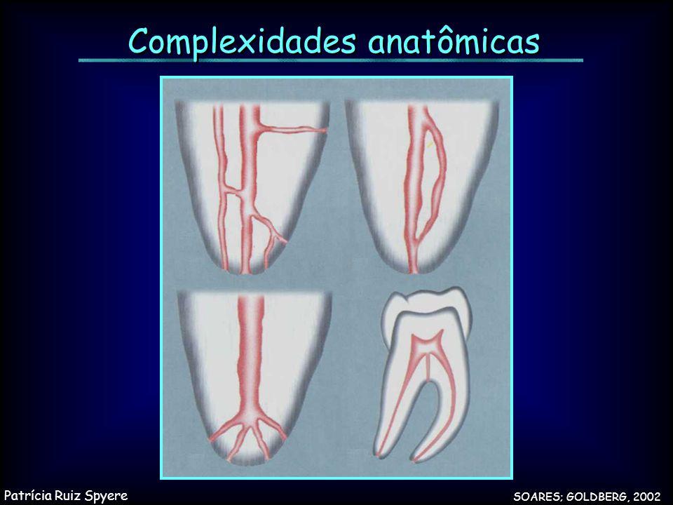 Complexidades anatômicas SOARES; GOLDBERG, 2002 Patrícia Ruiz Spyere