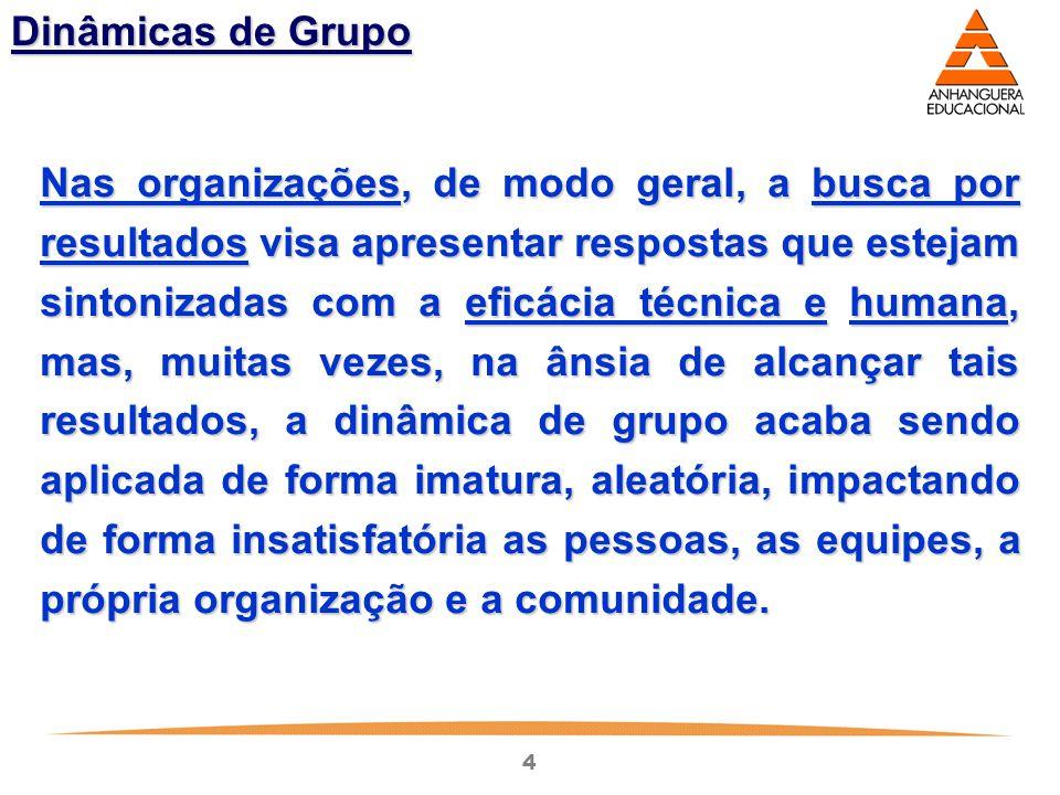 4 Dinâmicas de Grupo Nas organizações, de modo geral, a busca por resultados visa apresentar respostas que estejam sintonizadas com a eficácia técnica