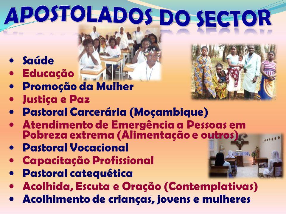 Saúde Educação Promoção da Mulher Justiça e Paz Pastoral Carcerária (Moçambique) Atendimento de Emergência a Pessoas em Pobreza extrema (Alimentação e outros) Pastoral Vocacional Capacitação Profissional Pastoral catequética Acolhida, Escuta e Oração (Contemplativas) Acolhimento de crianças, jovens e mulheres