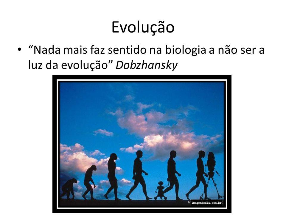 """Evolução """"Nada mais faz sentido na biologia a não ser a luz da evolução"""" Dobzhansky"""