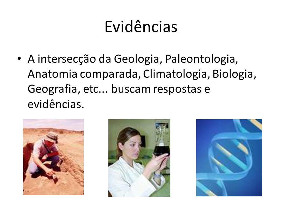 Evidências A intersecção da Geologia, Paleontologia, Anatomia comparada, Climatologia, Biologia, Geografia, etc... buscam respostas e evidências.