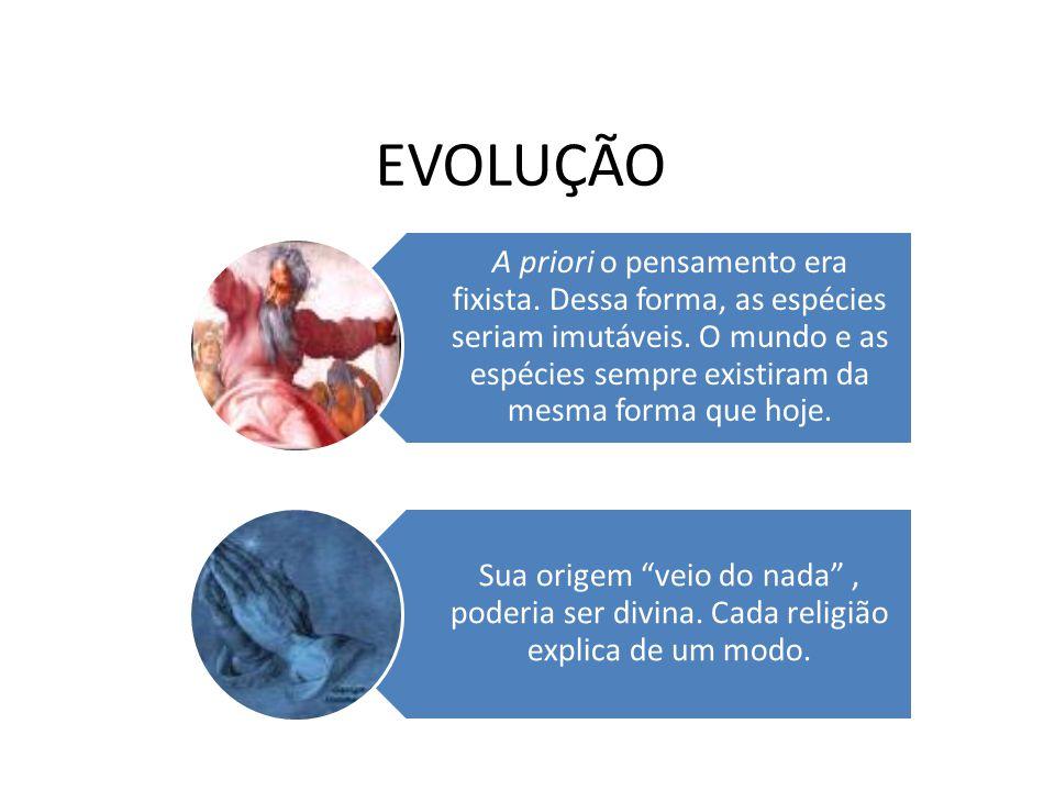 EVOLUÇÃO A priori o pensamento era fixista. Dessa forma, as espécies seriam imutáveis. O mundo e as espécies sempre existiram da mesma forma que hoje.