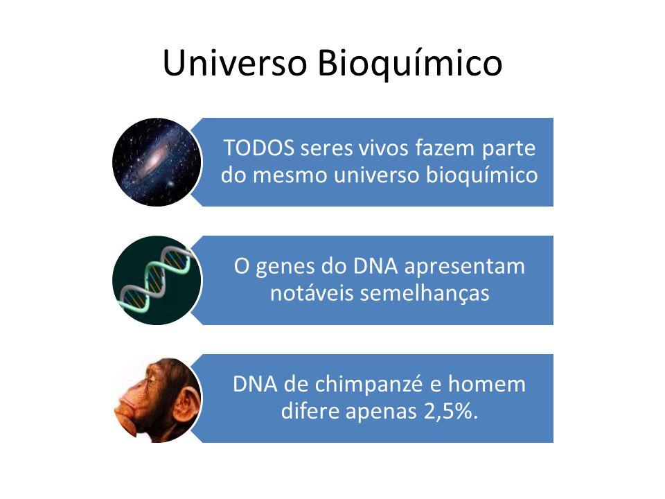 Universo Bioquímico TODOS seres vivos fazem parte do mesmo universo bioquímico O genes do DNA apresentam notáveis semelhanças DNA de chimpanzé e homem