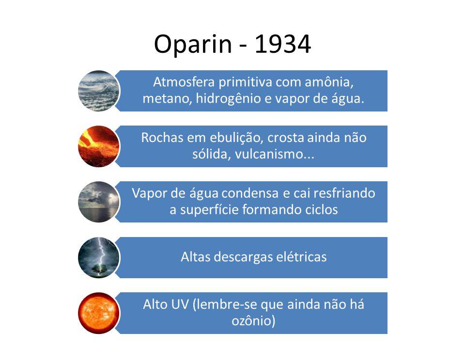 Oparin - 1934 Atmosfera primitiva com amônia, metano, hidrogênio e vapor de água. Rochas em ebulição, crosta ainda não sólida, vulcanismo... Vapor de