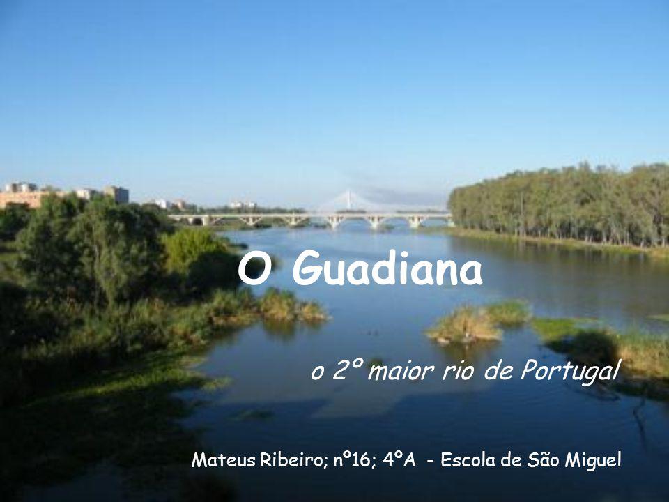 O Guadiana o 2º maior rio de Portugal Mateus Ribeiro; nº16; 4ºA - Escola de São Miguel