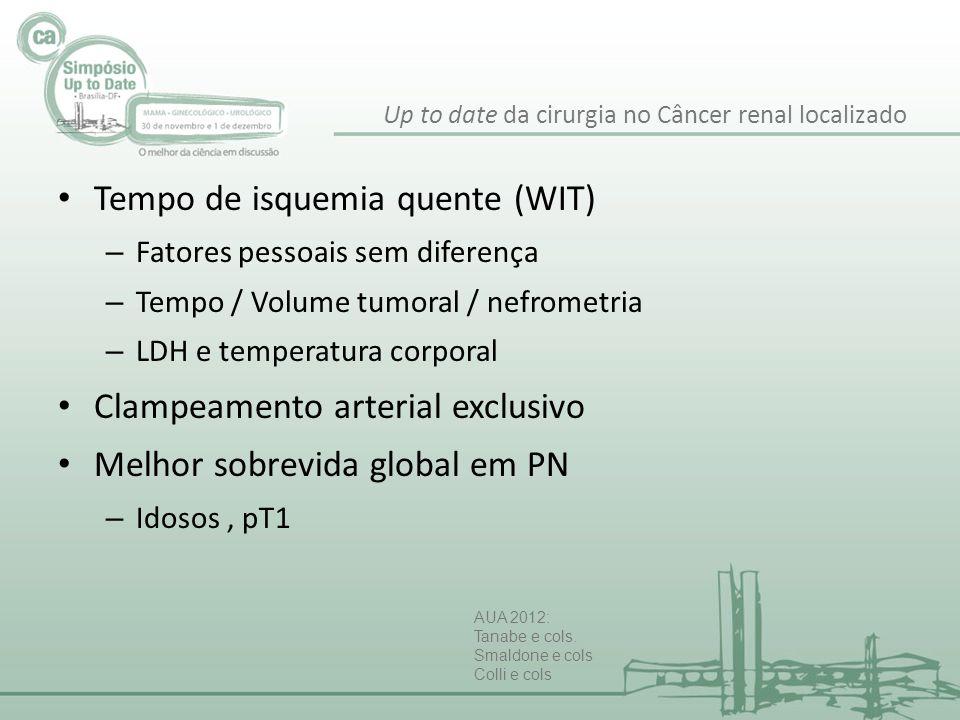Tempo de isquemia quente (WIT) – Fatores pessoais sem diferença – Tempo / Volume tumoral / nefrometria – LDH e temperatura corporal Clampeamento arter