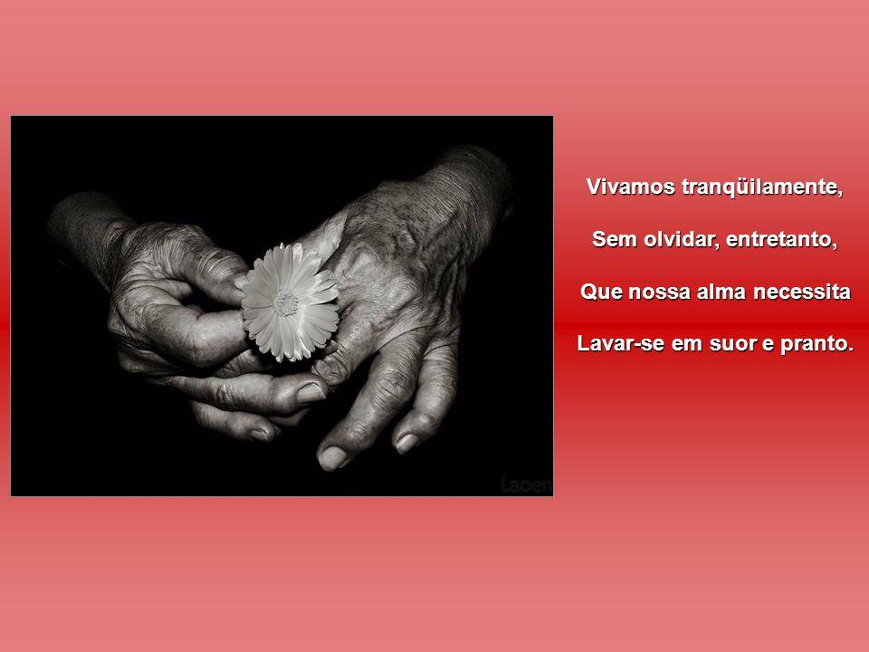 Vivamos tranqüilamente, Sem olvidar, entretanto, Que nossa alma necessita Lavar-se em suor e pranto.