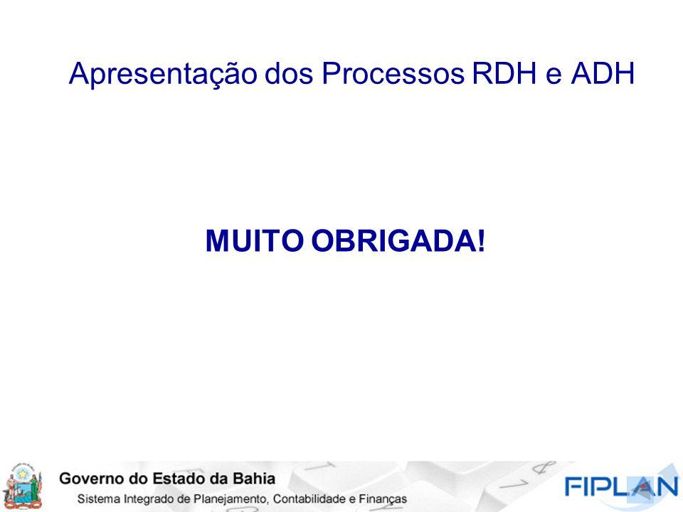 Apresentação dos Processos RDH e ADH MUITO OBRIGADA!