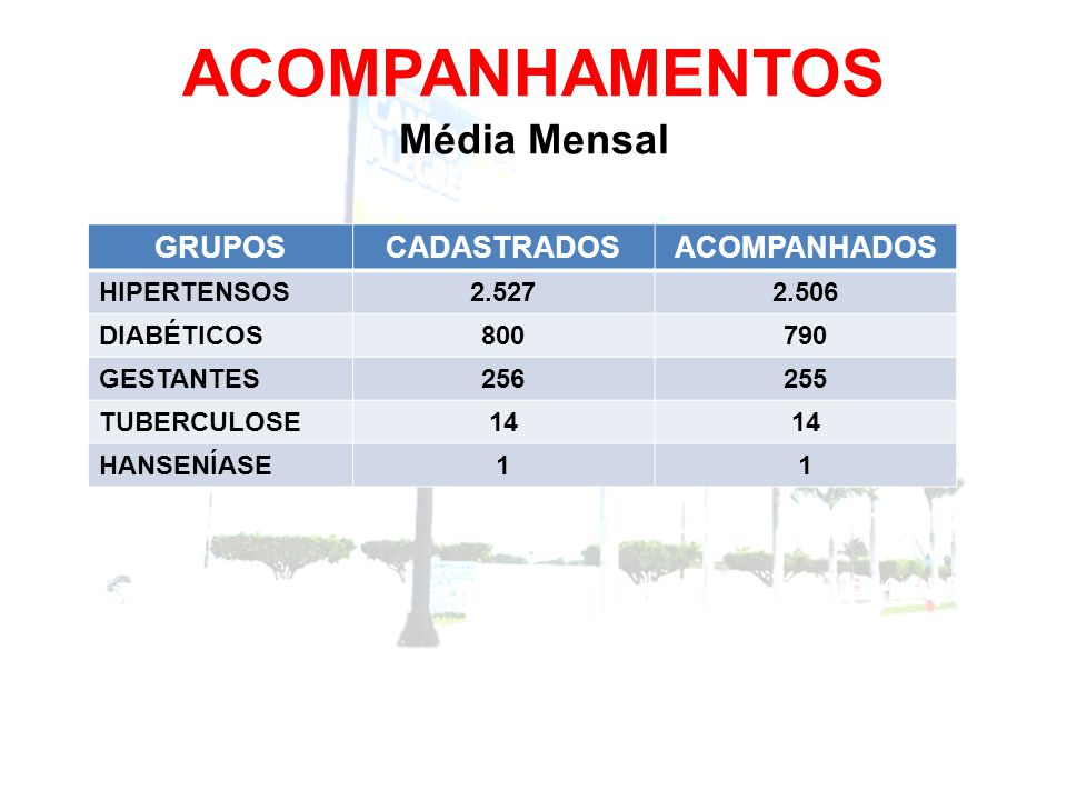 ACOMPANHAMENTOS Média Mensal GRUPOSCADASTRADOSACOMPANHADOS HIPERTENSOS2.5272.506 DIABÉTICOS800790 GESTANTES256255 TUBERCULOSE14 HANSENÍASE11