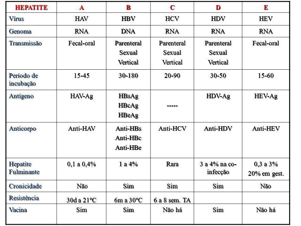 HEPATITEABCDE VírusHAVHBVHCVHDVHEV GenomaRNADNARNARNARNA TransmissãoFecal-oralParenteralSexualVerticalParenteralSexualVerticalParenteralSexualVerticalFecal-oral Período de incubação 15-4530-18020-9030-5015-60 AntígenoHAV-AgHBsAgHBcAgHBeAg-----HDV-AgHEV-Ag AnticorpoAnti-HAVAnti-HBsAnti-HBcAnti-HBeAnti-HCVAnti-HDVAnti-HEV Hepatite Fulminante 0,1 a 0,4% 1 a 4% Rara 3 a 4% na co- infecção 0,3 a 3% 20% em gest.