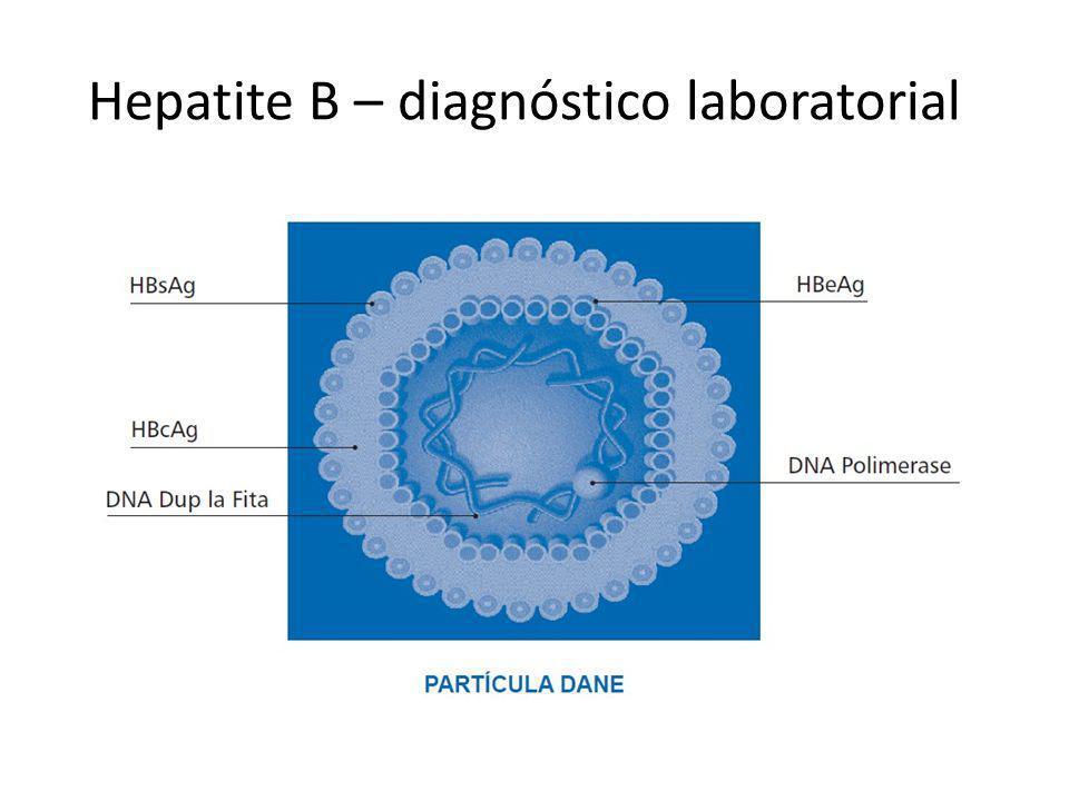 Hepatite B – diagnóstico laboratorial
