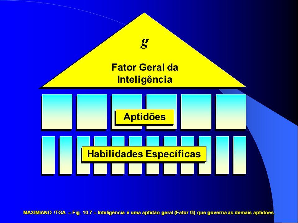 g Fator Geral da Inteligência Aptidões Habilidades Específicas MAXIMIANO /TGA – Fig. 10.7 – Inteligência é uma aptidão geral (Fator G) que governa as