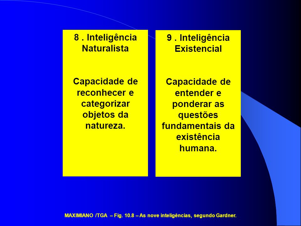 8. Inteligência Naturalista Capacidade de reconhecer e categorizar objetos da natureza. 9. Inteligência Existencial Capacidade de entender e ponderar