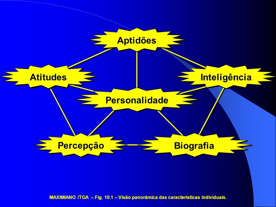 Percepção Aptidões Inteligência Atitudes Personalidade Biografia MAXIMIANO /TGA – Fig. 10.1 – Visão panorâmica das características individuais.