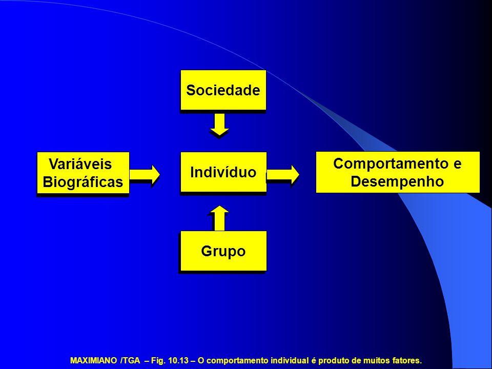 Variáveis Biográficas Variáveis Biográficas Sociedade Grupo Comportamento e Desempenho Indivíduo MAXIMIANO /TGA – Fig. 10.13 – O comportamento individ
