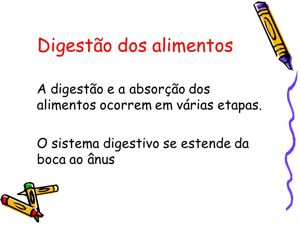 Digestão dos alimentos A digestão e a absorção dos alimentos ocorrem em várias etapas.