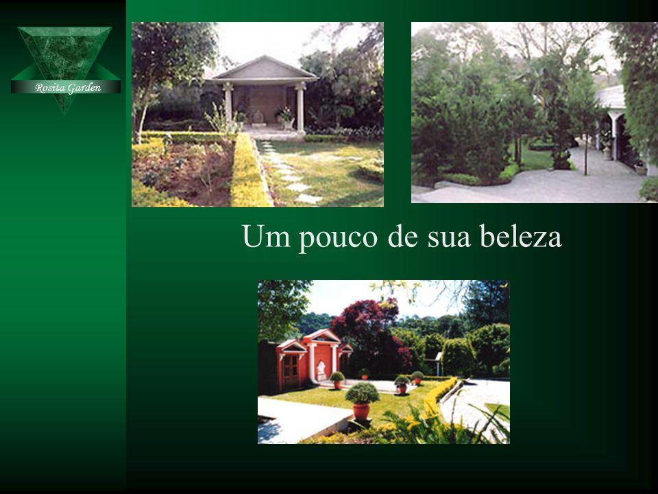 Um pouco de sua beleza Rosita Garden