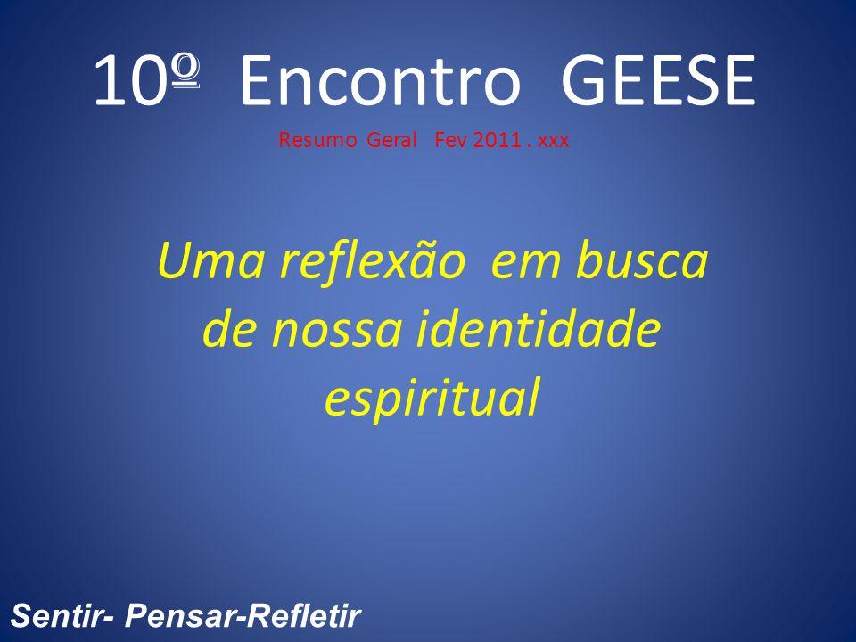 10 º Encontro GEESE Resumo Geral Fev 2011.