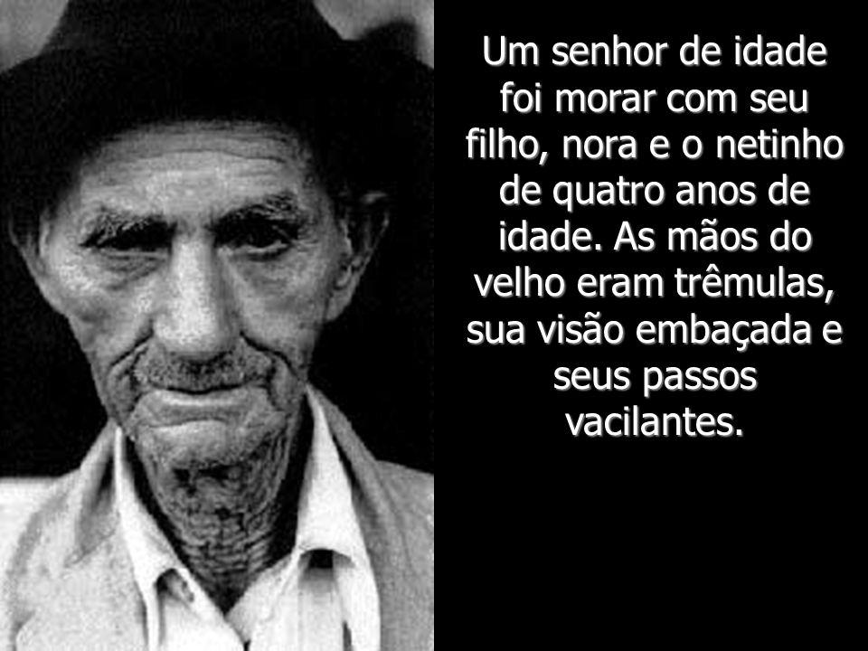 www.veralucia.art.br