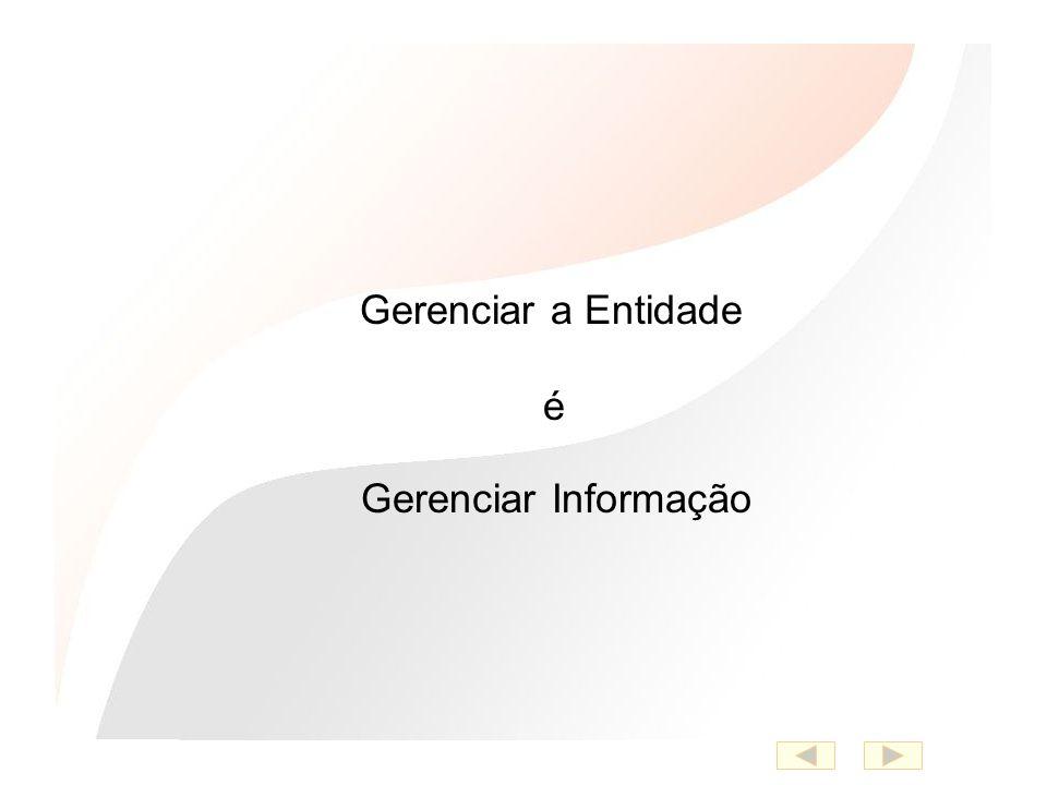 Gerenciar Informação Gerenciar a Entidade é