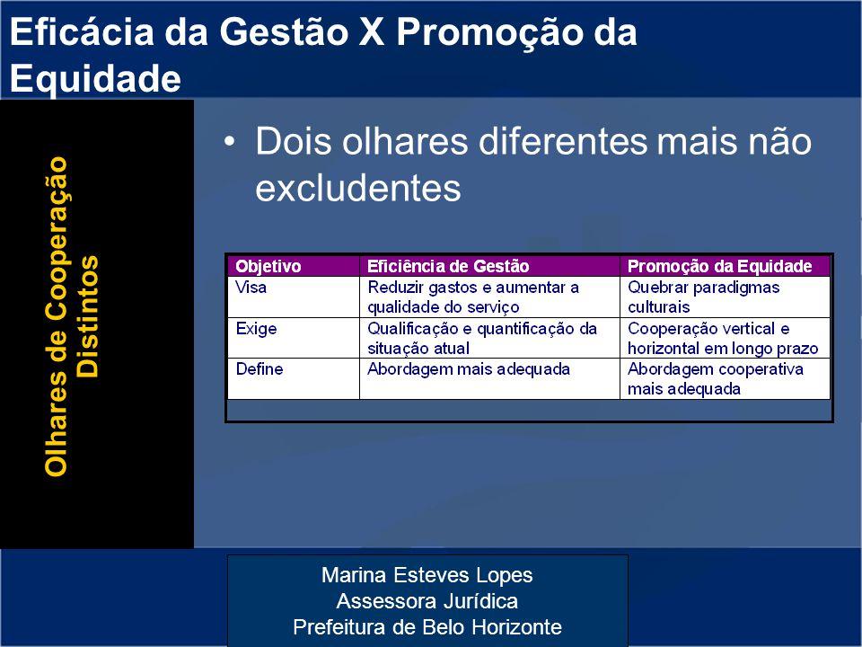 Marina Esteves Lopes Assessora Jurídica Prefeitura de Belo Horizonte Eficácia da Gestão X Promoção da Equidade Olhares de Cooperação Distintos Dois ol