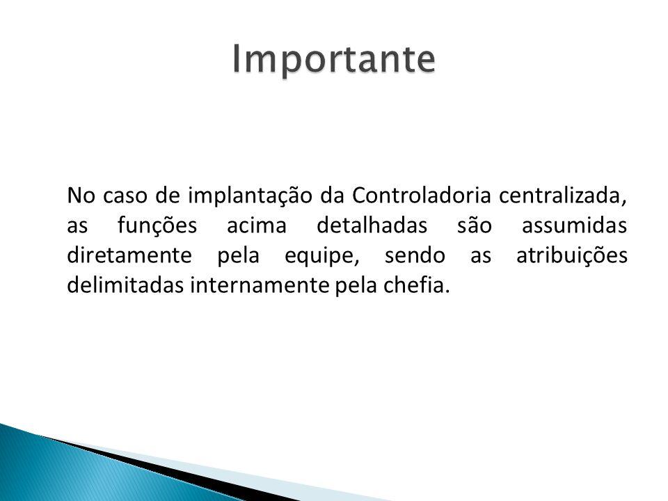 No caso de implantação da Controladoria centralizada, as funções acima detalhadas são assumidas diretamente pela equipe, sendo as atribuições delimita