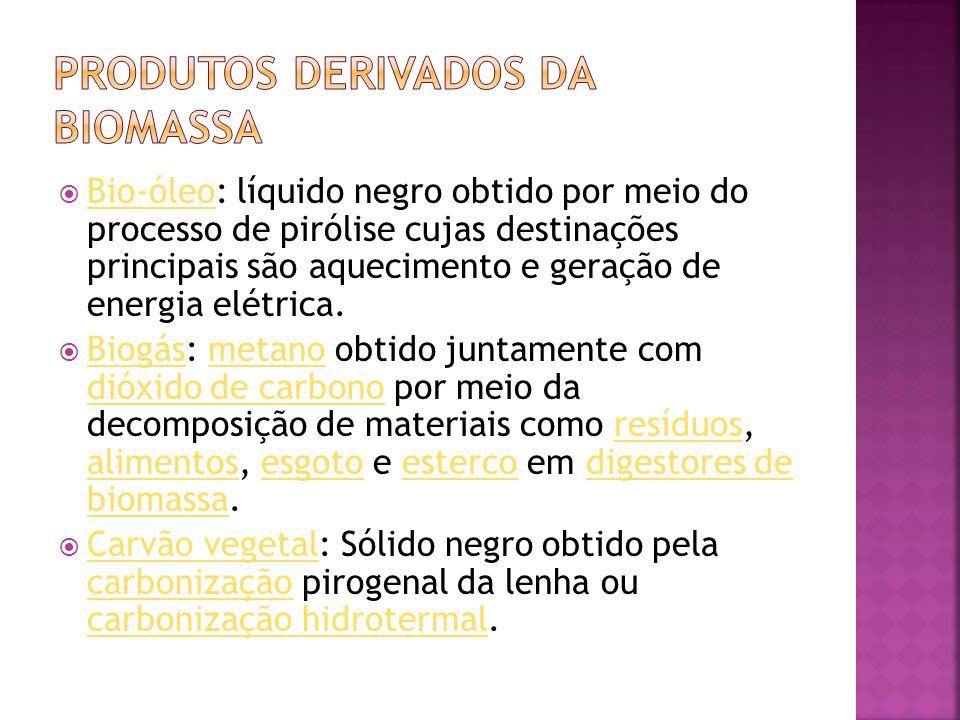  Bio-óleo: líquido negro obtido por meio do processo de pirólise cujas destinações principais são aquecimento e geração de energia elétrica. Bio-óleo