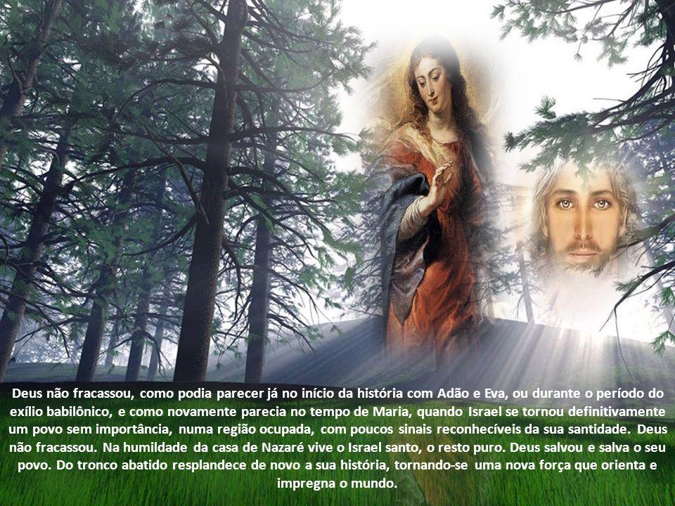 O Senhor habita nela, e nela encontra o lugar do seu repouso. Ela é a casa viva de Deus, que não habita em edifícios de pedra, mas no coração do homem