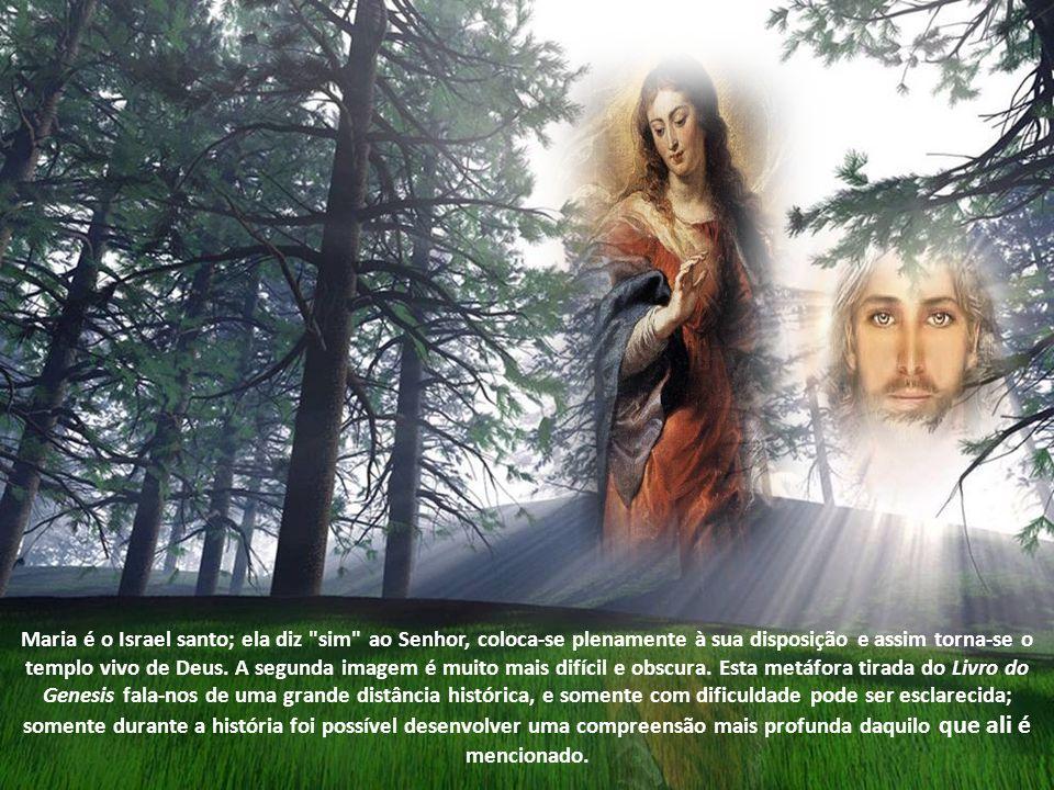 Deus não fracassou, como podia parecer já no início da história com Adão e Eva, ou durante o período do exílio babilônico, e como novamente parecia no