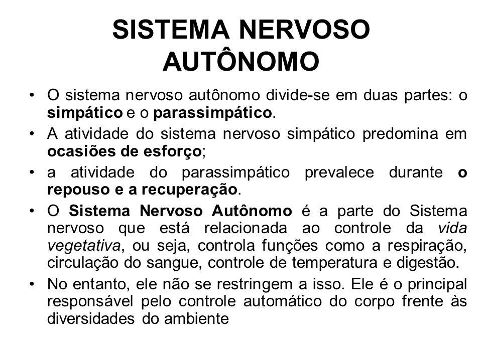 SISTEMA NERVOSO AUTÔNOMO O sistema nervoso autônomo divide-se em duas partes: o simpático e o parassimpático.