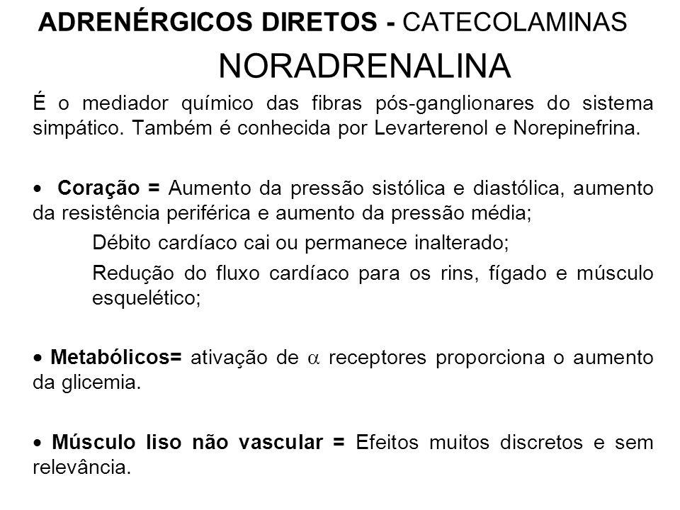 ADRENÉRGICOS DIRETOS - CATECOLAMINAS NORADRENALINA É o mediador químico das fibras pós-ganglionares do sistema simpático.