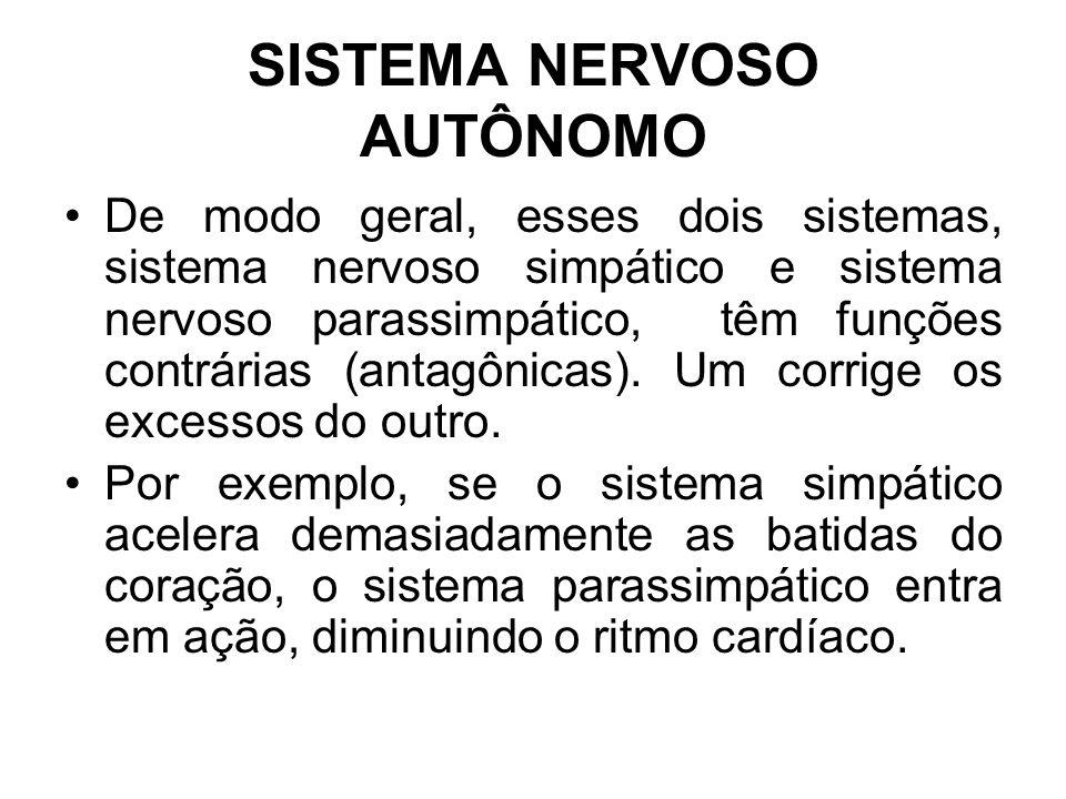 SISTEMA NERVOSO AUTÔNOMO De modo geral, esses dois sistemas, sistema nervoso simpático e sistema nervoso parassimpático, têm funções contrárias (antagônicas).
