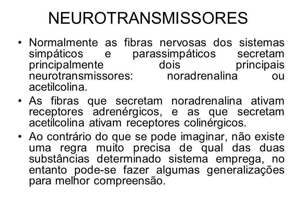 NEUROTRANSMISSORES Normalmente as fibras nervosas dos sistemas simpáticos e parassimpáticos secretam principalmente dois principais neurotransmissores: noradrenalina ou acetilcolina.