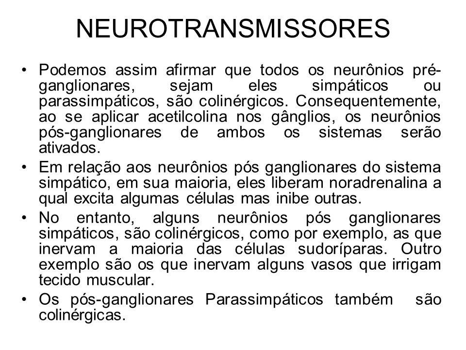 NEUROTRANSMISSORES Podemos assim afirmar que todos os neurônios pré- ganglionares, sejam eles simpáticos ou parassimpáticos, são colinérgicos.